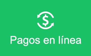 Banner Pagos en Linea - Home